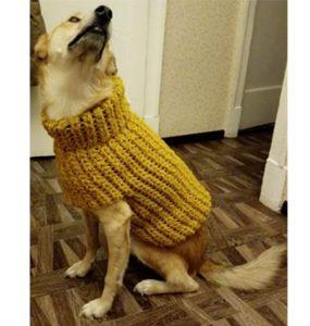 Как связать свитер для собаки